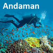 Andaman Tour Packages from Delhi with airfare