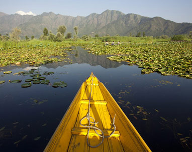 srinagar tour package from delhi