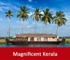 Munnar kerala munnar tourism moonar munnar tour guide for Travel planners kerala reviews