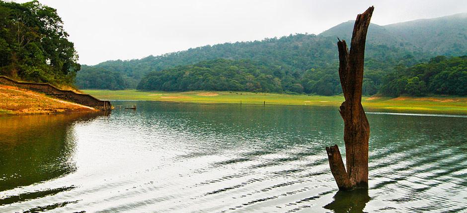 About thekkady thekkady tour guide thekkady tourism for Travel planners kerala reviews